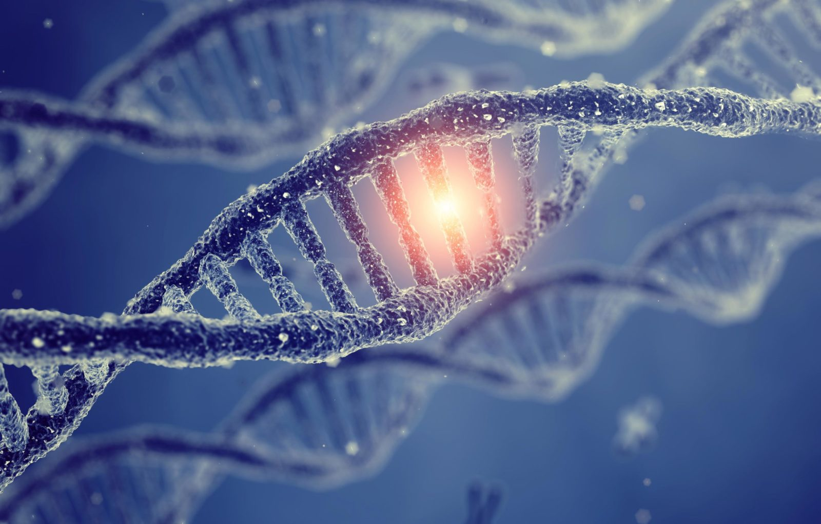 Happy DNA Day!