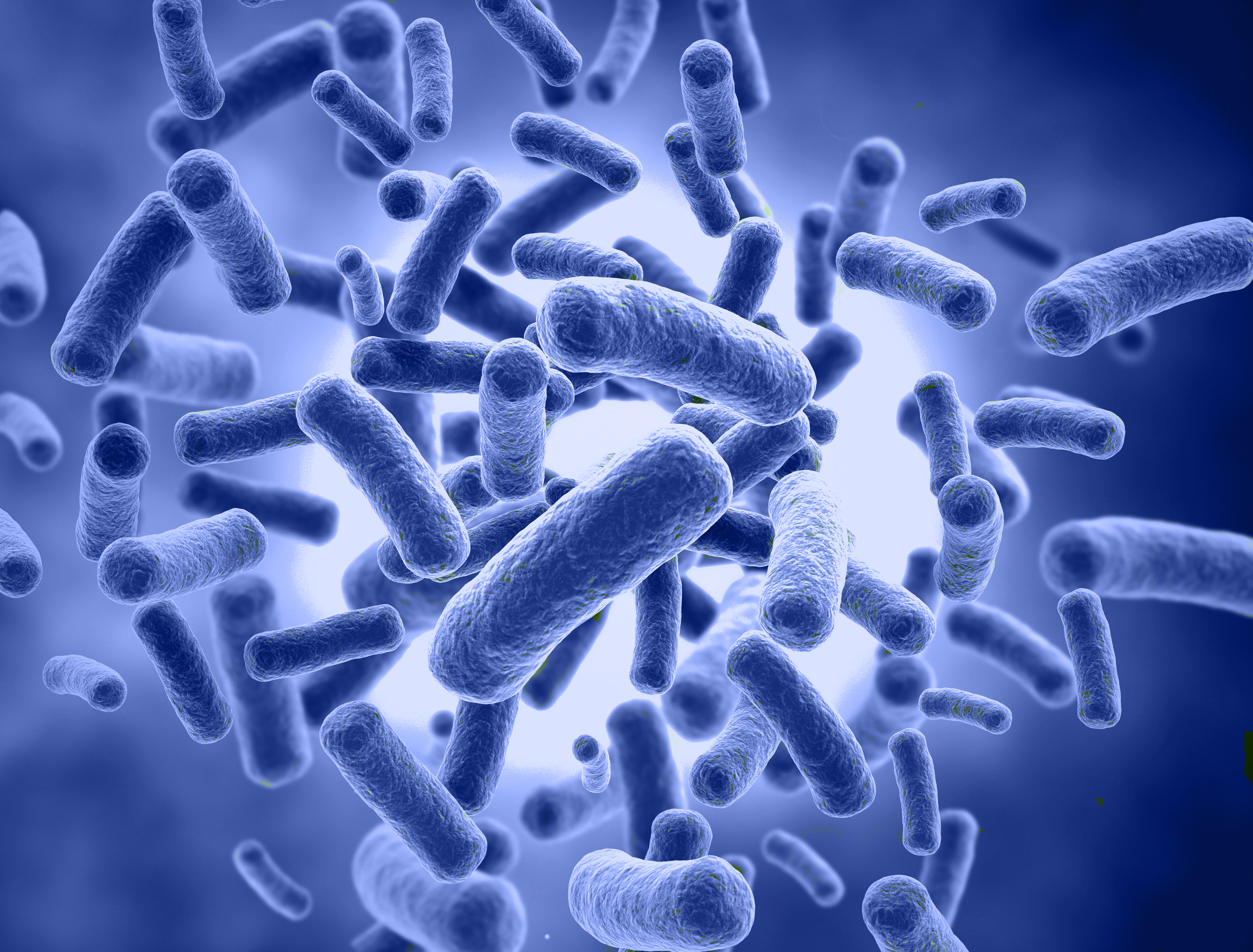 Microbiome Analysis – Are You Aware Of All The Applications?