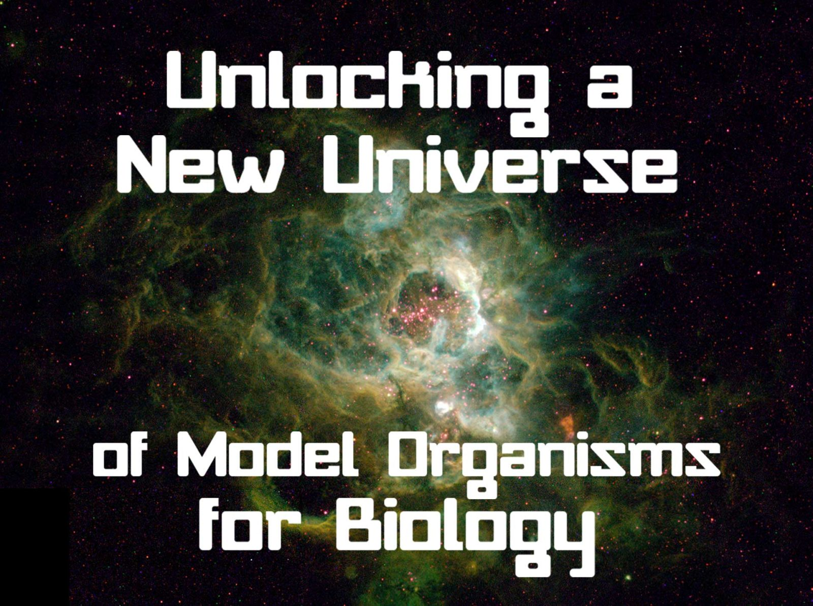 Unlocking a New Universe of Model Organisms for Biology