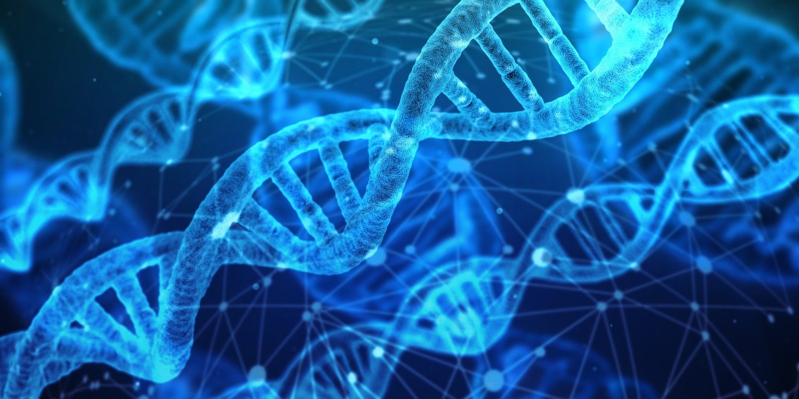 Who Won The Race To Solve The DNA Structure?