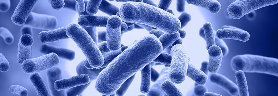 The Influence of the Microbiome on Human Health