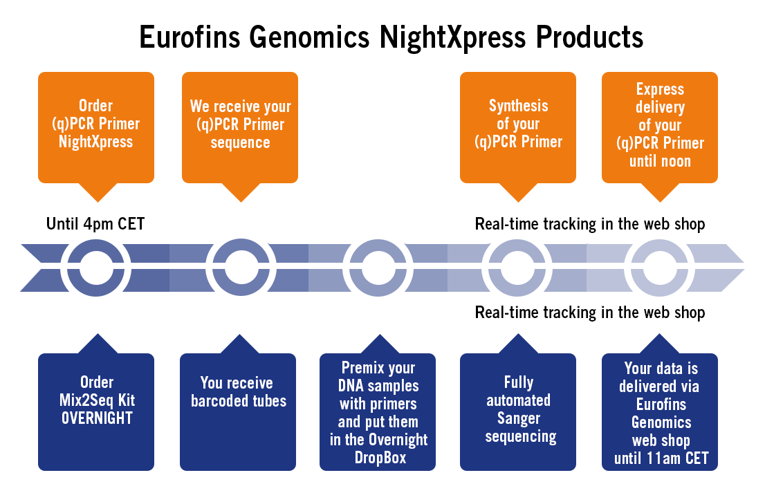 The Secret Behind Europe's Fastest qPCR Primers and Sanger Sequencing