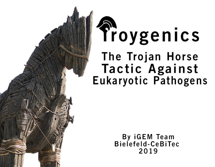Troygenics – the Trojan Horse Tactic Against Eukaryotic Pathogens